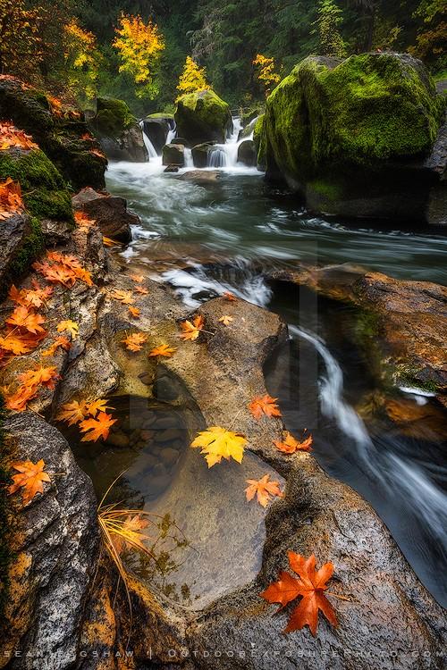 Battaile Falls Print, Little River, Oregon