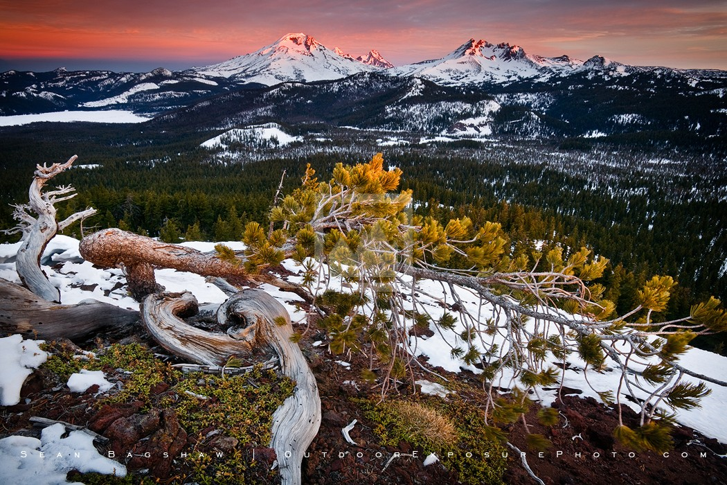 Touch of Light Print, Cascade Range, Oregon