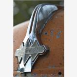 Hood Badge Stock Image