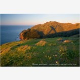 Marin Headlands Stock Image,