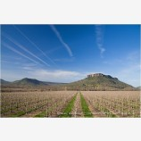 Table Rock and Pear Orchard 1 Stock Image,