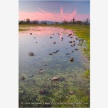 Vernal Pool On Upper Table Rock Stock Image,
