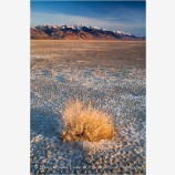 Alvord Desert 4 Stock Image, Harney County, Oregon