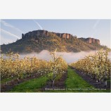 Table Rock and Pear Orchard 3 Stock Image,