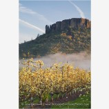 Table Rock and Pear Orchard 4 Stock Image,