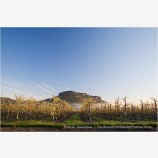 Table Rock and Pear Orchard 5 Stock Image,