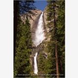 Yosemite Falls 1 Stock Image,