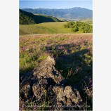 Ashland Hills Stock Image, Dead Indian Memorial Highway, Ashland, Oregon