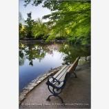 Lithia Park 5 Stock Image,