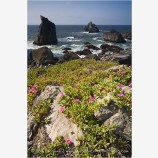 Northern California Coast 1 Stock Image,