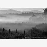 Morning Mist Stock Image, Howard Prairie, Oregon