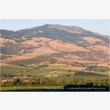 Rogue Valley 11 Stock Image,