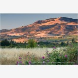 Rogue Valley 12 Stock Image,