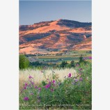 Rogue Valley 13 Stock Image,
