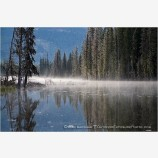 Misty Forest Lake Stock Image,