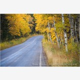 Country Road in Fall 1 Stock Image, Montana