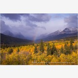 Montana Fall Foliage 2 Stock Image,
