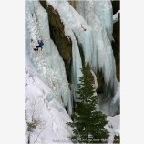Rappelling On Ice II Stock Image, Ouray, Colorado