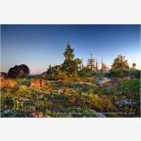 Secret Garden Stock Image, Oregon