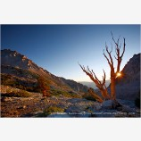 Sunrise at Shepherd Pass Stock Image, Sierras, California