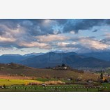 Evening Orchard Stock Image, Ashland, Oregon