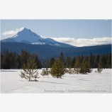 Mt. McLoughlin in Winter Stock Image,