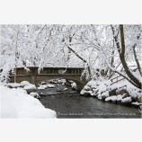 Lithia Park in Snow 2 Stock Image,