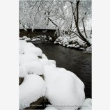 Lithia Park in Snow 3 Stock Image,