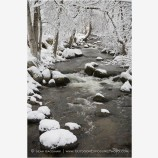 Lithia Park in Snow 4 Stock Image,
