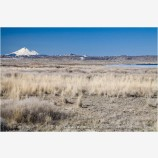 Lower Klamath Wildlife Refuge 4 Stock Image,