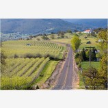 Rogue Valley in Spring 6 Stock Image,