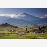 Rogue Valley in Spring 7 Stock Image,