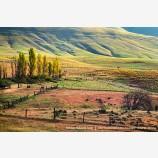 Dalles Mountain Ranch Stock Image, Columbia Gorge, Washington