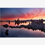 Dawn Fire at Mono Lake Stock Image, Mono Lake, California