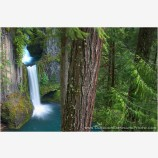 Toketee Falls Stock Image North Umpqua River, Oregon