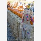 Scarecrow 3 Stock Image