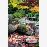 Japanese Garden Fall 7 Stock Image, Lithia Park, Ashland, Oregon