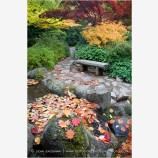 Japanese Garden Fall 8 Stock Image, Lithia Park, Ashland, Oregon