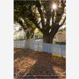 Fall Picket Fence 2 Stock Image Ashland, Oregon