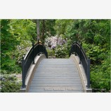 Lithia Park Bridge Stock Image Ashland, Oregon