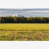 Mt. McLoughlin across Howard Prairie Stock Image Ashland, Oregon