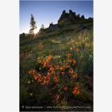 Rabbit Ear Rocks Stock Image Southern Oregon