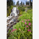 Vidae Falls 2 Stock Image Oregon