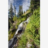 Vidae Falls 5 Stock Image Oregon