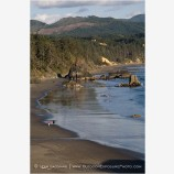 Port Orford Stock Image Oregon Coast
