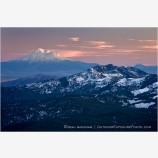 Mt. Shasta at Sunset Stock Image Siskiyou Mountains, Oregon