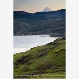 Mt. Hood overlooking Columbia River Stock Image Oregon