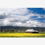 Barn in the Rogue Valley Stock Image Medford, Oregon