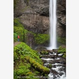 Latourell Falls Stock Image Columbia Gorge, Oregon