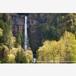 Multnomah Falls Stock Image Columbia Gorge, Oregon
